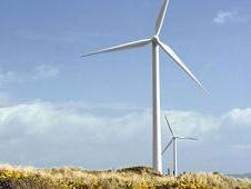 ekologija-vetrenjace