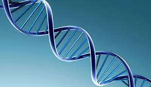 bolesti-koje-prete-gen1